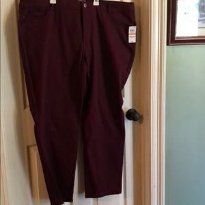 New with tags. Burgundy plus sized jeans